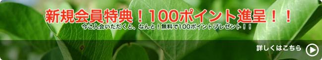新規会員特典!100ポイントプレゼント!!